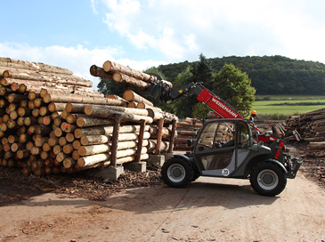 Forestry and timber industry